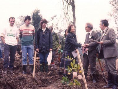 Pigdown 1988