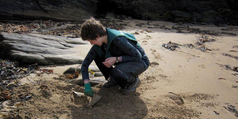 Norfolk, Lundy, Devon … to working behind the scenes